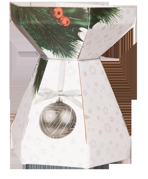 AquaBox-Christmas-Design
