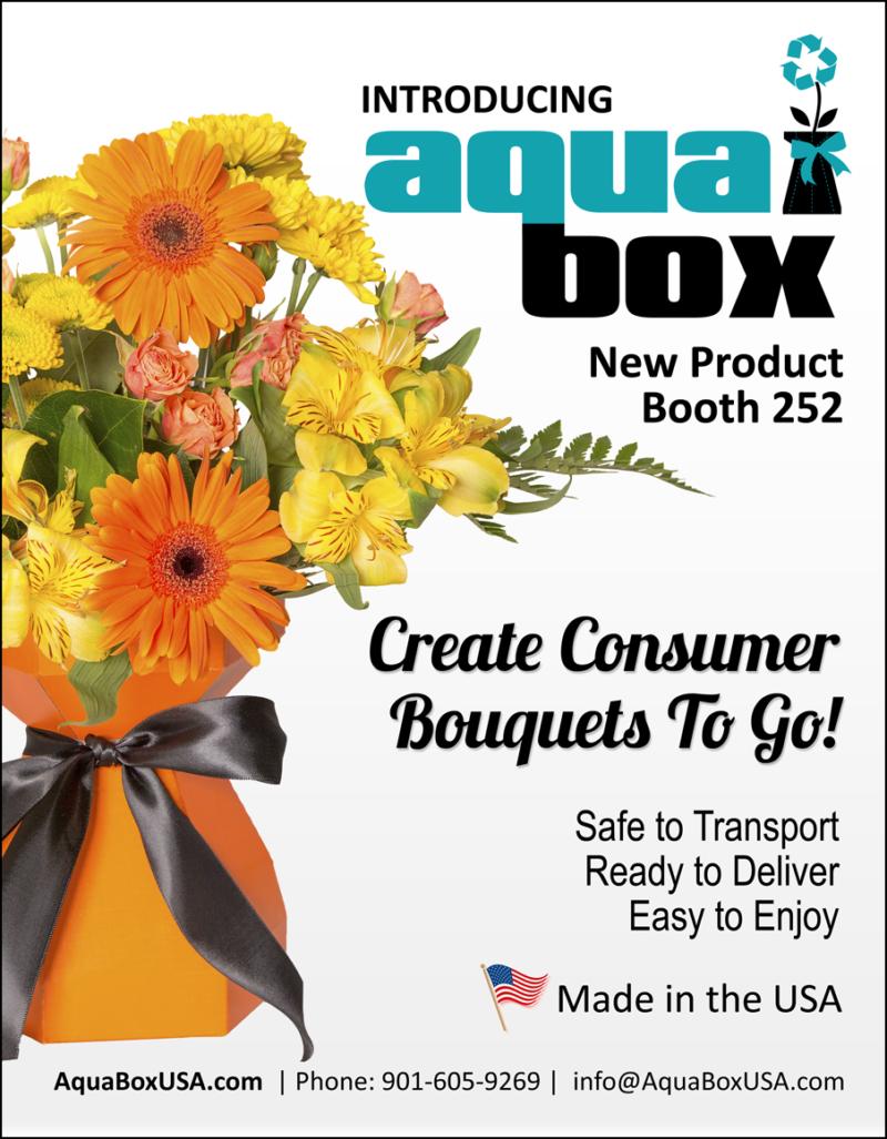 AquaBox-IFE-Ad2