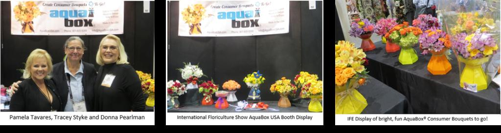 AquaBox Displays